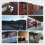 PhotoGrid_1489771536810