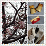PhotoGrid_1491091167974
