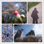 PhotoGrid_1491964480045